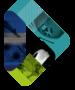 logo-WRF